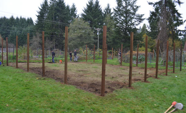 The Completed Expansion Of The New Garden Plot, With 8u0027 Tall Deer Fencing.