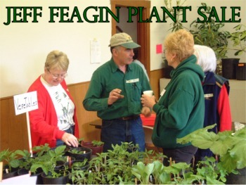 Annual Jeff Feagin Memorial Plant Sale